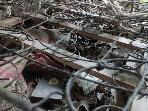 abandoned mattress