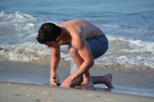 digging mole crabs