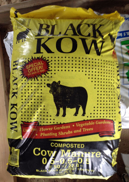 black-cow-manure