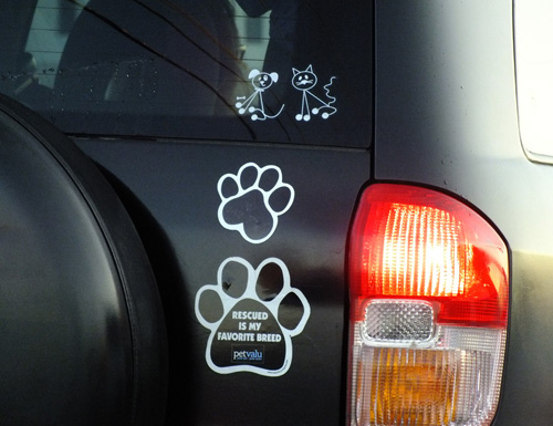 car magnet with paw
