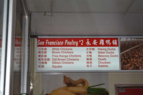 poultry factory SF