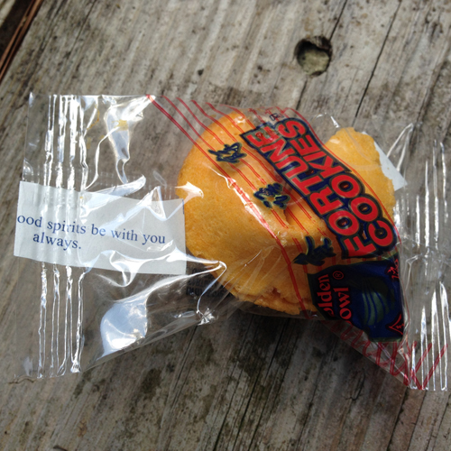 real fortune cookie